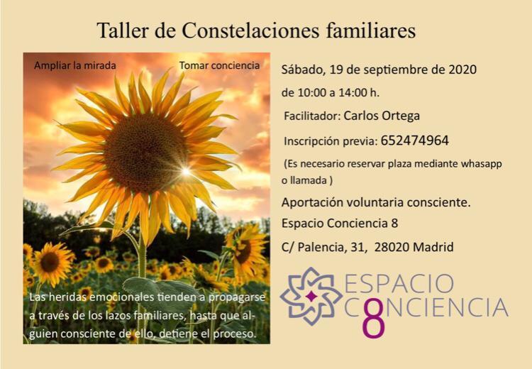 Taller de Constelaciones familiares 19 Septiembre 2020